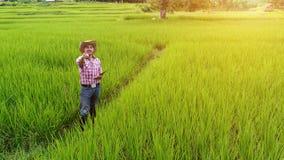 Młodego człowieka średniorolny szczęście na ryżowym greenfield obrazy royalty free