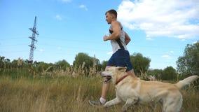 Młodego człowieka biegać plenerowy z jego psem Labrador lub golden retriever jogging z jego męskim właścicielem przy naturą Zdrow zbiory