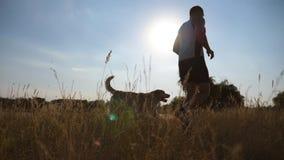Młodego człowieka biegać plenerowy z jego psem Labrador lub golden retriever jogging z jego męskim właścicielem przy naturą Zdrow zdjęcie wideo
