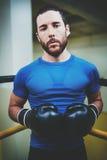 Młodego człowieka bokserski trening na pierścionku w sprawność fizyczna klubie Kaukaski męski bokser w czarnych rękawiczkach Mięś Zdjęcia Stock