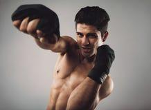 Młodego człowieka cienia ćwiczy boks Fotografia Stock