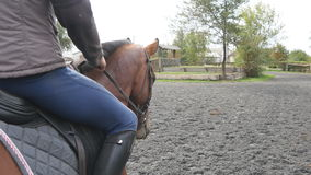 Młodego człowieka horseback jazda plenerowa Męski dżokej przy końskim odprowadzeniem przy manege przy gospodarstwem rolnym na cie Obrazy Royalty Free