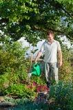 Młodego człowieka ogrodniczki podlewania kwiaty w ogródzie Zdjęcie Royalty Free