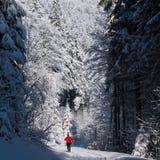 Młodego człowieka przez cały kraj narciarstwo na uroczym zima dniu Zdjęcie Royalty Free
