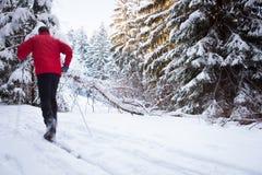 Młodego człowieka przez cały kraj narciarstwo na uroczym zima dniu Obraz Royalty Free