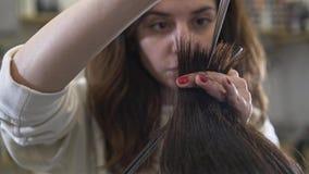 Młodego pięknego fryzjera tnący ciemny długie włosy jej klient zbiory