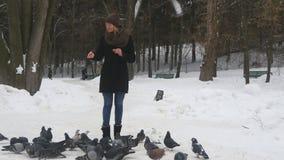 Młodej dziewczyny karma ptaki w zimie parkują Gołębie jedzą ziarna, latają daleko od then zbiory