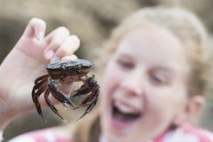 Młodej Dziewczyny mienia krab Znajdujący W Rockpool Na plaży zdjęcia stock