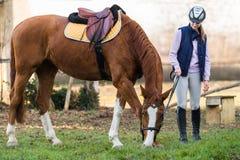 Młodej dziewczyny narządzania koń dla przejażdżki Obraz Stock