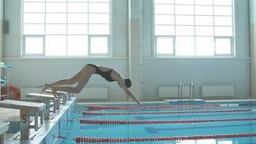 Młodej dziewczyny pływaczka, ten doskakiwanie i pikowanie w salowego sporta pływackiego basen, zbiory
