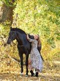 Młodej equestrian kobiety chodzący koń w jesień parku obrazy stock