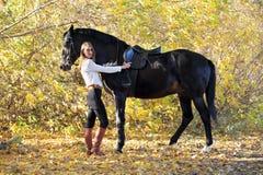 Młodej equestrian kobiety chodzący koń w jesień parku obraz royalty free