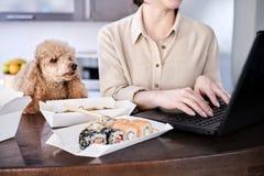 Młodej freelancer kobiety smaczny azjatykci jedzenie przy miejsce pracy zdjęcie stock