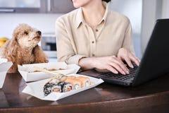 Młodej freelancer kobiety smaczny azjatykci jedzenie przy miejsce pracy, zdjęcie royalty free