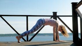 Młodej kobiety ćwiczy joga outdoors w lecie Zdrowy Styl ?ycia zbiory wideo
