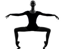 Młodej kobiety baleriny baletniczy tancerz Obraz Royalty Free