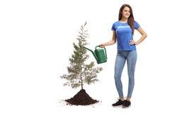 Młodej kobiety dolewania ochotnicza woda drzewo obraz stock