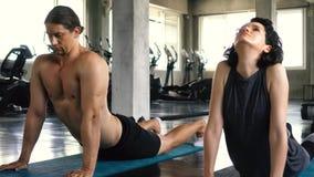M?odej kobiety i m??czyzny ?wiczy joga z oddolnym psem i zmniejszaj?cy si? psia poza na gym pod?odze Dwa ludzie pary dzia?ania zdjęcie wideo