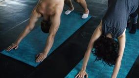M?odej kobiety i m??czyzny ?wiczy joga z zmniejszaj?cy si? psi? poz? na gym pod?odze Dwa ludzie pary opracowywa indoors zbiory wideo