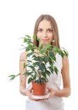 Młodej kobiety mienia houseplant, isolaterd na bielu obrazy stock