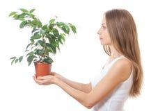 Młodej kobiety mienia houseplant, isolaterd na bielu zdjęcia stock