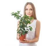 Młodej kobiety mienia houseplant, isolaterd na bielu zdjęcie stock