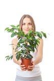 Młodej kobiety mienia houseplant, isolaterd na bielu Obraz Royalty Free