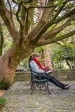 Młodej Kobiety obsiadanie na ławce pod drzewnym czytaniem książka Obraz Stock