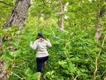 Młodej kobiety odprowadzenie przez zwarty piękny jaskrawego - zielony las z roślinami i klonowymi drzewami na zewnątrz Waterton,  zdjęcie royalty free