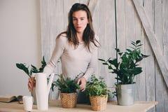 Młodej kobiety podlewania flowerpots w domu Przypadkowe styl życia serie w nowożytnym scandinavian wnętrzu Zdjęcie Royalty Free