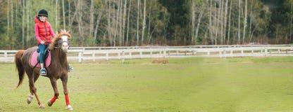 Młodej sportsmenki jeździecki koń w equestrian przedstawieniu skacze rywalizację Nastoletniej dziewczyny przejażdżka koń zdjęcia royalty free