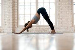 Młodej sporty kobiety ćwiczy joga, robić Zmniejszający się - stawiać czoło psi ex zdjęcia stock