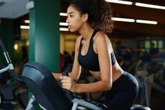 Młodej sprawności fizycznej ranku wzorcowy robi cardio trening Obraz Stock