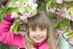 Młodość kwiat, świeżość zdjęcie royalty free