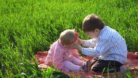 Młodszy brat i siostra siedzimy na koc w polu zbiory wideo
