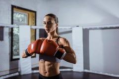 Młody żeński bokser fotografia stock