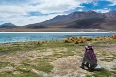 Młody żeński podróżnik obserwuje ptaki w górskim jeziorze - birdwatching Obrazy Stock