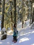 Młody żeński snowshoer snowshoeing przez śniegu świeżo zakrywał lasy Cyprysowa góra na pięknym pogodnym zima dniu zdjęcia stock