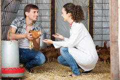 Młody żeński weterynarz opowiada męski rolnik Obraz Royalty Free