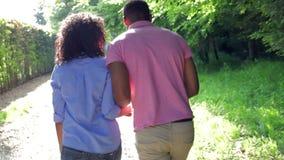 Młody amerykanin afrykańskiego pochodzenia pary odprowadzenie W wsi zbiory