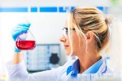 Młody atrakcyjny żeński naukowiec trzyma kolbę z czerwonym liqui Zdjęcia Stock