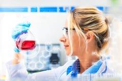 Młody atrakcyjny żeński naukowiec trzyma kolbę z czerwonym liqui Fotografia Stock