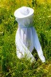 Młody beekeper w specjalnym białym ochronnym stroju patrzeje jak duch obrazy royalty free