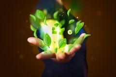 Młody biznesmen przedstawia eco zielonego liść przetwarza energetycznego conce Fotografia Royalty Free