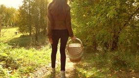 Młody brunetki kobiety odprowadzenie przez jesieni drewien, mienie pykniczny kosz słoneczny dzień Zwolnionego tempa steadicam wid zdjęcie wideo