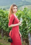 Młody brunetki piękno w winnicach zdjęcia royalty free