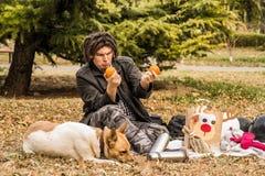 Młody caucasian mężczyzna z afro fryzurą na pinkinie z jego psem bawić się z pomarańczami Obrazy Stock