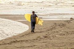 Młody chłopiec odprowadzenie w kierunku oceanu z wetsuit i koloru żółtego surfboard prawie monochromatic w - brązach i ochers fotografia royalty free