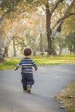 Młody chłopiec odprowadzenie w parku obrazy royalty free