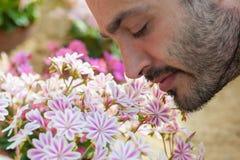 Młody człowiek cieszy się aromat wiosny okwitnięcia menchie kwitnie S Obraz Stock
